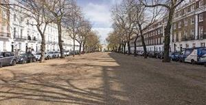 Royal Avenue, SW3