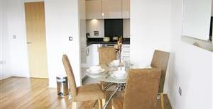 Viridian Apartments, Battersea Park Road, SW8
