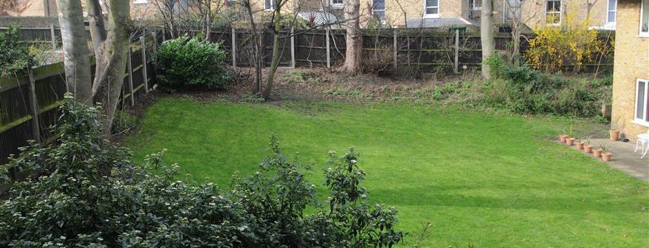 Communal Garden
